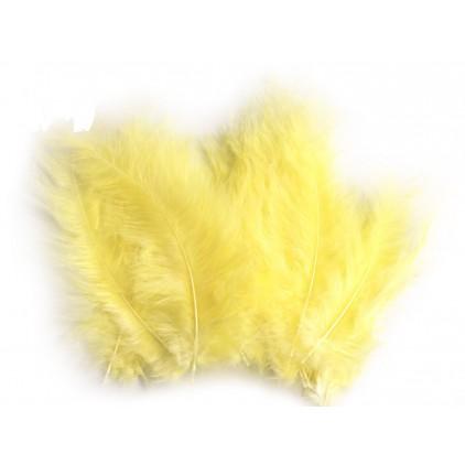 Strusie piórka - jasnożółte