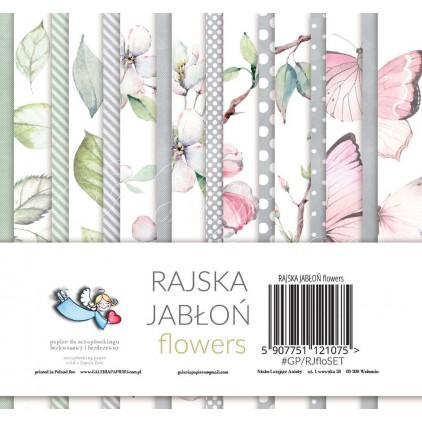 Zestaw papierów do scrapbookingu 15x15 - Rajska Jabłoń Flowers - Galeria Papieru