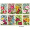 Decorer - Set of mini scrapbooking papers - Herbs and roses