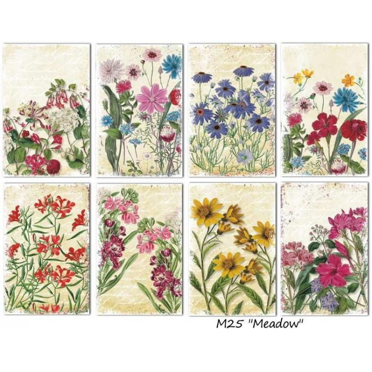 Decorer - Set of mini scrapbooking papers - Meadow