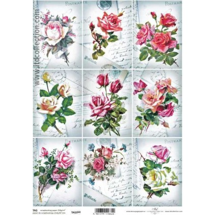 ITD Collection - Scrapbooking paper - TAG050