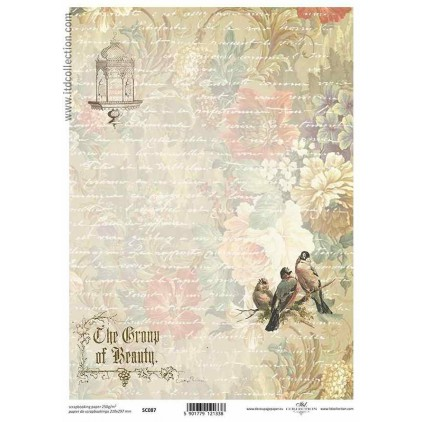 ITD Collection - Scrapbooking paper - SC087