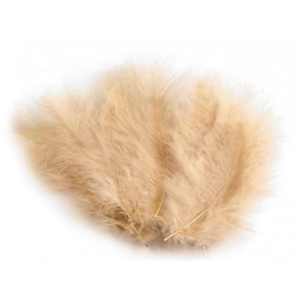 Ostrich feathers - Beige