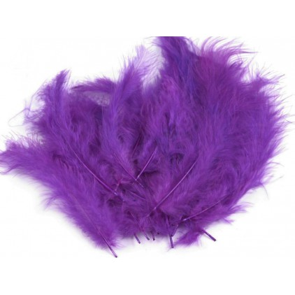 Ostrich feathers violet