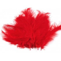 Strusie piórka - Czerwone