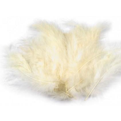 Ostrich feathers vanilla