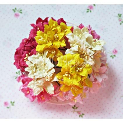 Zestaw papierowych lilii - miks 2 - 50 sztuk