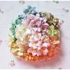 Paper lily flower set - mix 3- 50 pcs