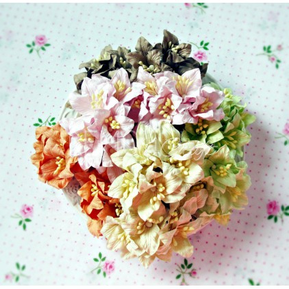 Paper lily flower set - mix 5 - 50 pcs