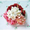 Paper lily flower set - mix 7 - 50 pcs
