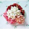 Zestaw papierowych lilii - miks 7 - 50 sztuk