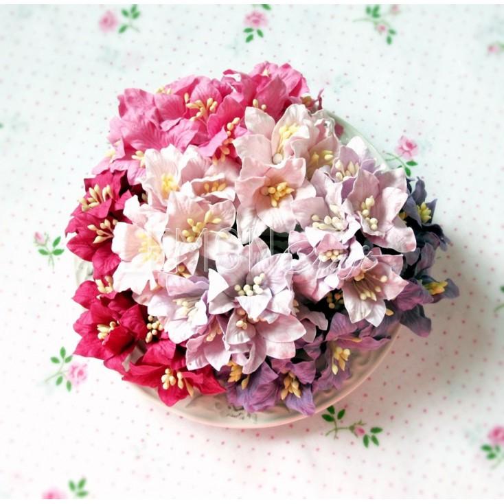 Paper lily flower set - mix 8 - 50 pcs