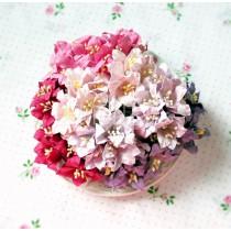 Zestaw papierowych lilii - miks 8 - 50 sztuk