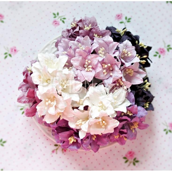 Zestaw papierowych lilii - miks 10 - 50 sztuk