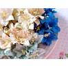 Zestaw papierowych lilii - miks 12 - 50 sztuk