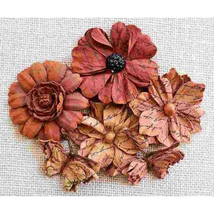 Zestaw papierowych kwiatów - Vintage Asteria Terracota