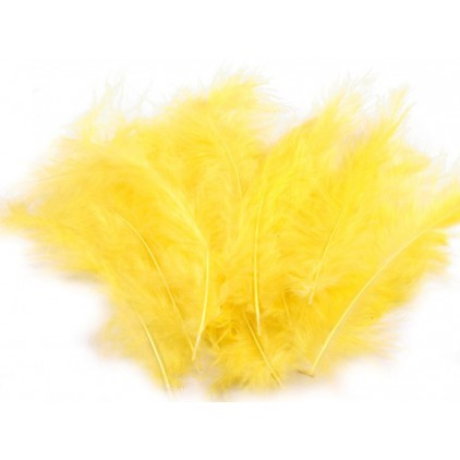Ostrich feathers - Yellow