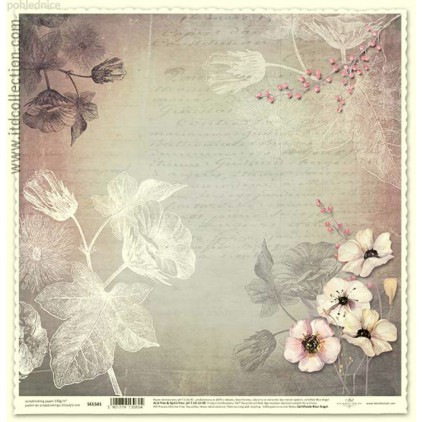 ITD Collection - Scrapbooking paper -  SCL581