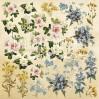 Set of scrapbooking papers - Fabrika Decoru - Botany Summer