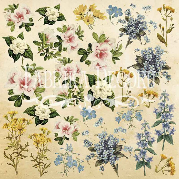 Scrapbooking paper - Fabrika Decoru - Botany Summer - Pictures for cutting