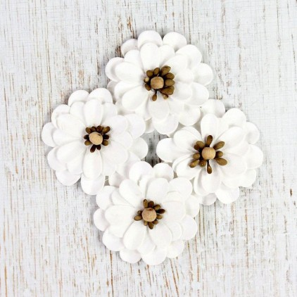 Paper flower set - Mountain Daisies Classic White