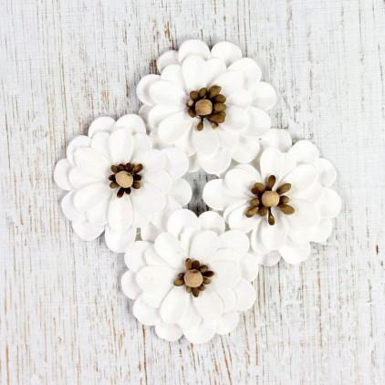 Papierowe margerytki - Mountain Daisies Classic White - 4 sztuki