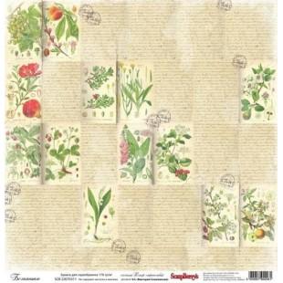 Wzory, motywy roślinne, przyrodnicze, zielarskie